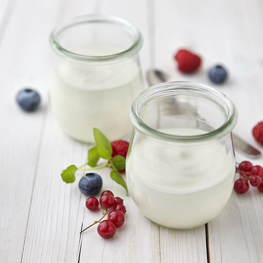 Hydrosol - Produkte - Producktuebersicht - Joghurt